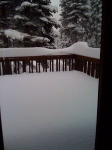 Deck this AM after husband cleared of snow last night!